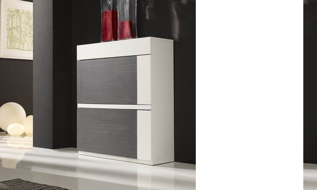 meuble chaussures moderne felicita 2 tiroirs coloris. Black Bedroom Furniture Sets. Home Design Ideas