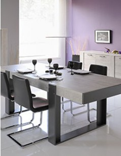 Table à manger contemporaine couleur gris clair et anthracite PAULINE