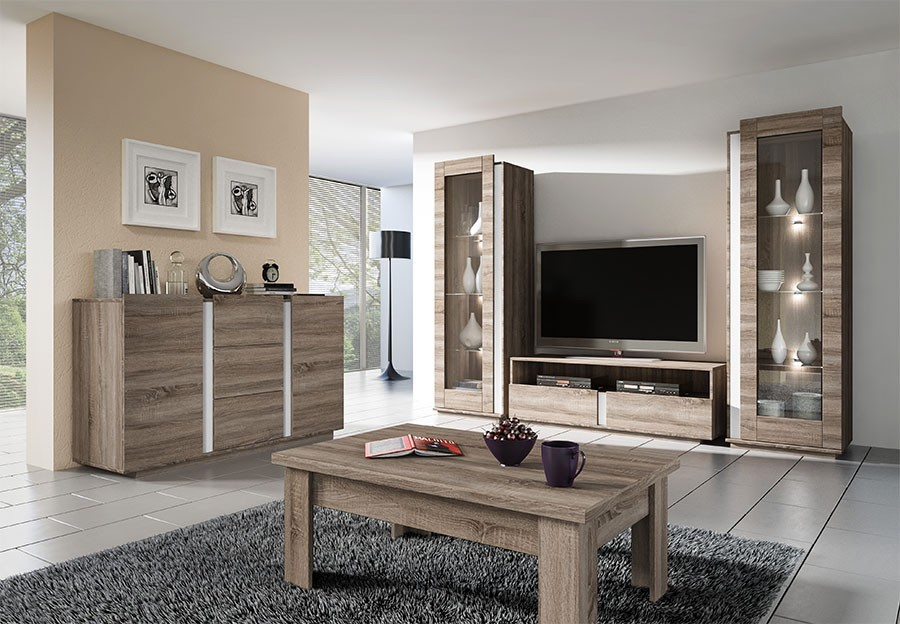 Model meuble salon en bois for Meuble salon sejour design