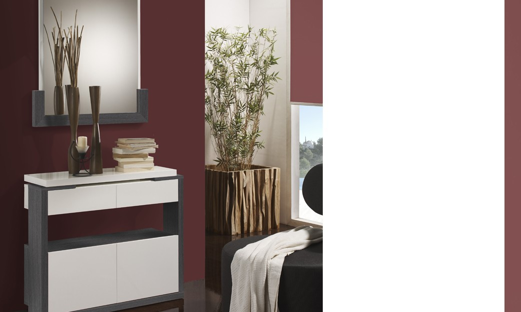 meuble d 39 entr e moderne avec meuble chaussures miroir. Black Bedroom Furniture Sets. Home Design Ideas